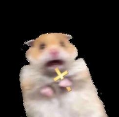 christ hamster sticker funny lucyfmallon freetoedit