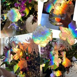 rainbow flowers god heaven sister aunt bestfriend amazing love jesus supernatural pretty aesthetic purple blue green yellow orange red bytanakay tanakay tanakayyt bytanakayyt
