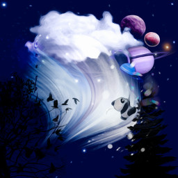 pandalover myedit illustration digitalart cloud starry myinspiration