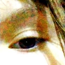 глаза желтый черный взгляд зеленый свет белый freetoedit