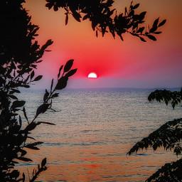 sun summer myphoto freetoedit