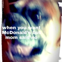 hungrydog freetoedit