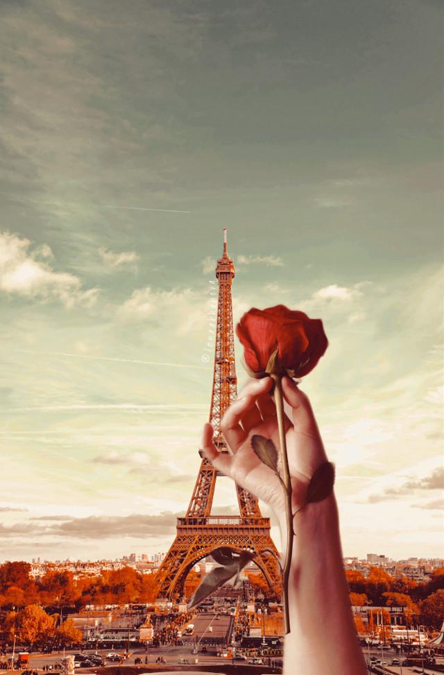 #freetoedit#paris #rose #love  — — 🌹🗼 https://youtu.be/G_ciS05HR-c https://youtu.be/6MOixFn6t3Y