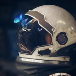mydog interstellar