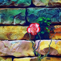 freetoedit stones rose myart myediting