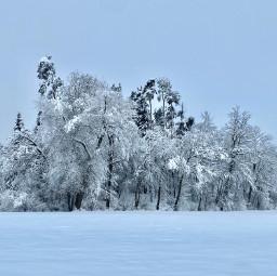 freetoedit winterwonderland swizerland