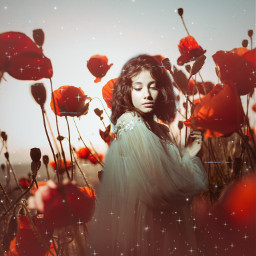 replay picsartreplay vintage nostalgia aesthetic imagination poppies field woman freetoedit