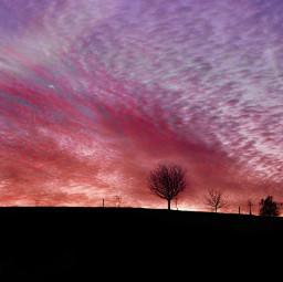 freetoedit sunsetlovers