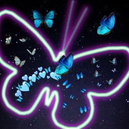 blue butterflies freetoedit