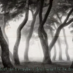 freetoedit quotes trees interesting