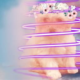 viral complexedit edit heypicsart makethisviral niche tom jerry interesting uramazing ilysm beigeaesthetic statueaesthetic nicheedit ily flowers not_chloe amongus among us the makeitviral beige nude nudeaesthetic freetoedit
