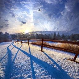 freetoedit remixit nature peace follow followme followforfollow followmeplease beauty pretty landscape beautiful fanart fotoedit winter snow fence sunrise blue cold frozen unite