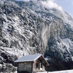 nature switzerland schweiz freetoedit pcnaturethroughmyeyes naturethroughmyeyes