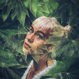 doubleexposure leaf woman freetoedit