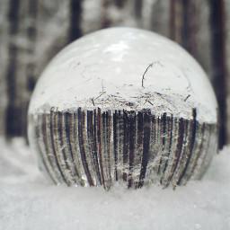 lensballphotography forest woods beautiful snow