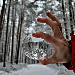 lensballphotography beautifull snow woods walking beautiful