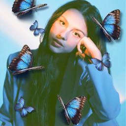 oliviarodrigo blueaesthetic butterflies freetoedit srcbluebutterflies bluebutterflies