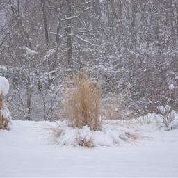 winter freetoedit myphotography snowglobe