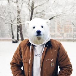 snow snowflake winter freetoedit