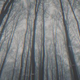horror forest freetoedit