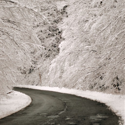 road winter wintermood snow wonderfulmood freetoedit