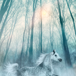picsart myedit myremix surreal freetoedit horse blending fxeffects forest followme