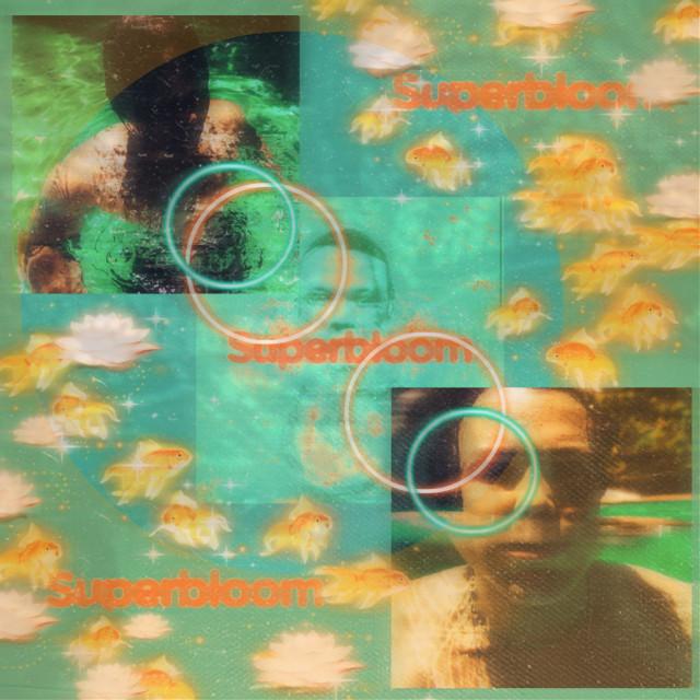 Superbloom-Ashton Irwin            #ashtonirwin #5secondsofsummer #5sosashton #5sos #lukehemmings #michaelclifford #calumhood #superbloom #album #5sosfam #interesting #music #people