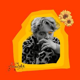 aesthetic aestheticedit aestheticyellow aestheticred aestheticorange lucastonnesen sunflower aestheticsunflower butterfly aestheticbutterfly freetoedit