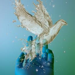 water freetoedit ircinthepalmofourhands inthepalmofourhands