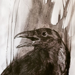 drawing watercolor theprometeus theraven