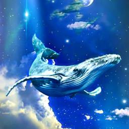myoriginalwork originalart whale nightsky dreamlike