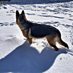 nieve lola filomena