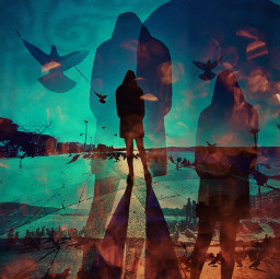 heypicsart mylove mobilephotography iphone madewithpicsart birds flying moody dream colorful color shadow silhouette street