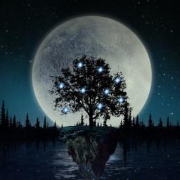 tree dark light freetoedit