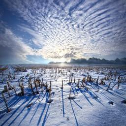 freetoedit remixit nature landscapephotography beauty pretty landscape sunrise countryside countrylife farm winter snow fanart followme followforfollow happytaeminday