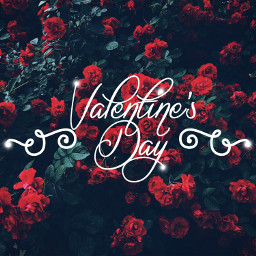 freetoedit happyvalentinesday valentinesday text quote