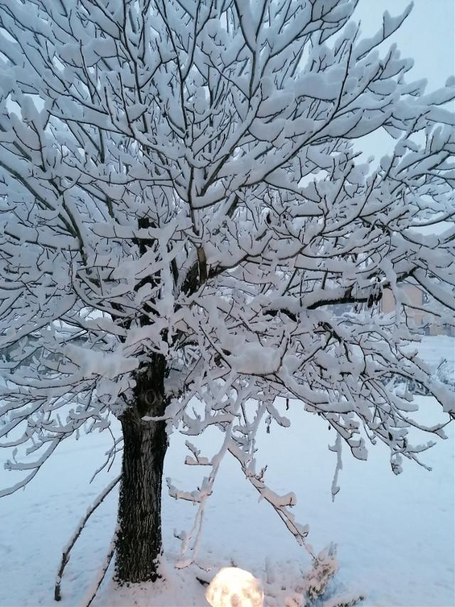 #finestra #neve #morning