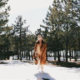 freetoedit snow trees