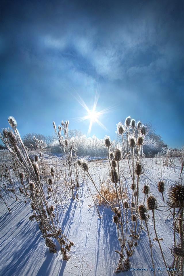 """ Well Beyond "" - Wisconsin Horizons by Phil Koch. Turning natural landscapes into portraits of nature. #freetoedit #remixit #nature #landscapephotography #beauty #pretty #landscape #beautiful #follow #fanart #peace #happytaeminday #popular #folow4follow #followme #love #art #winter #snow #frost #frozen #nature #cute"