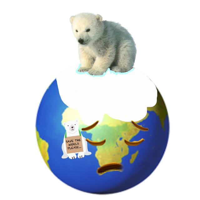 #savedtheworld #savedthepolarbear