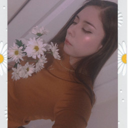 freetoedit daisyflower spring flowerphotography flowers photostory youth peace