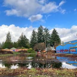 freetoedit pond graf graffiti swim trees sky blue clouds conifer douglasfir pctheblueisee theblueisee