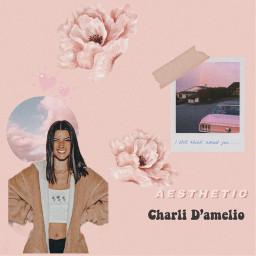 charli freetoedit