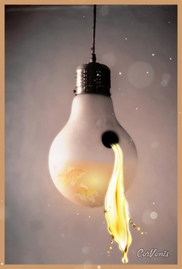 #challenge #light bulb #corvonts #talainasorensen8 #vote #goldfish #spill