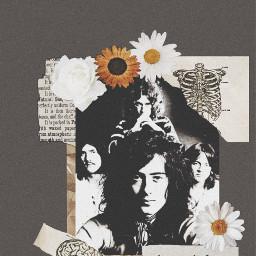 music ledzeppelin greyaesthetic floweraesthetic freetoedit