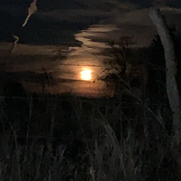 blurry moon goodnight
