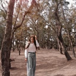 picoftheday forest freetoedit