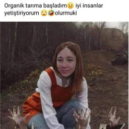 organic handmade freetoedit