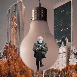 berniememe newyork irclightbulb lightbulb freetoedit