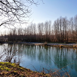 landscape reflection trees myphoto lanca lombardia italia freetoedit
